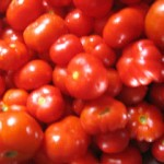 tomatinia santorinis